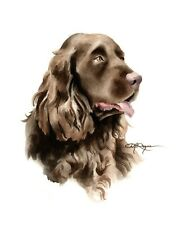 SUSSEX SPANIEL Dog Watercolor Painting 8 x 10 Art Print by Artist DJ Rogers +COA