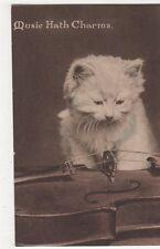 Music Hath Charms, Solomon Bros. Cat Postcard, B371