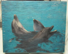 DOLPHINS 550 pc Jigsaw Puzzle of Claudio Ferrer Devaney Photo of live Dolphins