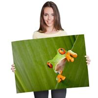 A1 - Cool Green Frog Nature Frogs Poster 60X90cm180gsm Print #3682