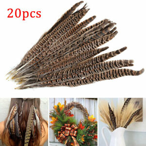 20 Pack Natural Pheasant Tail Feathers 10-12 Inch Long DIY Craft Party 25-30cm