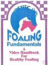 Foaling Fundamentals-Video Handbook for Novice Breeders / NEW PRICING!!