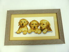 Finished Framed Golden Labrador Retriever Puppies Cross Stitch Piece