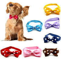 Cute Pet Dog Cat Bowknot Necktie Adjustable Puppy Bow Tie Cartoon Accessories