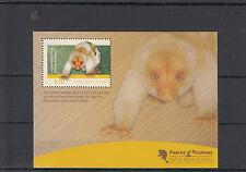 Papua New Guinea 2012 MNH Cuscus & Possums 1v S/S Wild Animals Fauna Wildlife