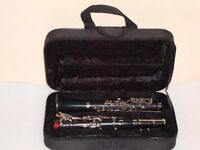 NEW ALBERT SYSTEM Eb CLARINET 14 KEYS WITH FREE HARD CASE+MOUTHPIECE