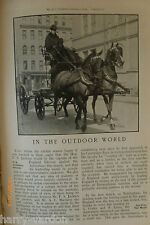 Vanderbilt Horses Croquet Swimming F S Jackson Cricket Cycling Old Article 1905