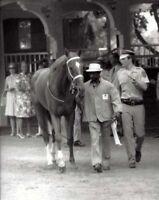 SECRETARIAT & EDDIE SWEAT -ORIGINAL 1973 8X10 BELMONT STAKES HORSE RACING PHOTO!