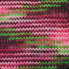 Alpaca Yarn Company Paca Peds Sock Yarn Frog & Piggy 360 yards Delightful!