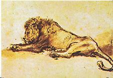 Art Postcard - Lion - Pen & Brush with Brown Ink - Rembrandt Van Rijn   AB2063