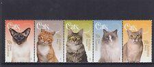 AUSTRALIA - 2015 CATS Pet Animals design strip set of 5 MNH