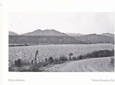 "*Postcard-""Fields of Grass/Agriculture"" (Before Homes)*Pacific Palisades Ca(#211"