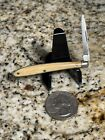 """RARE Antique German French??? Tiny Single Blade Pen Knife - 2 1/4"""" Closed"""