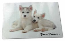 Husky Puppies 'Yours Forever' Extra Large Toughened Glass Cutting, , AD-H60yGCBL
