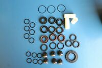 Interpump Oil Water Seal Valve Piston Kit for WS151 WS201 WS251 other ø 20 20 mm