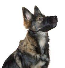 Muselières Kerbl pour le dressage des chiens