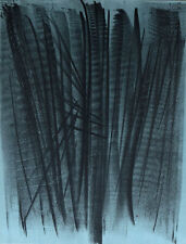 Hans HARTUNG XXe Siecle No.24 1964 Lithograph 12-1/4 x 9-1/2