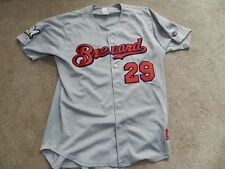 2016 Brevard County Manatees Game Used Road Jersey 29 Cy Sneed Milwaukee Brewers