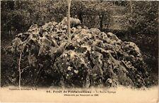 CPA   Forét de Fontainebleau -La Roche Eponge -Découverte par Dencourt (249248)
