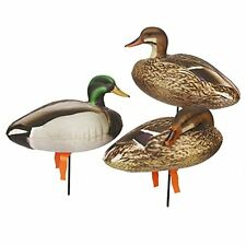 NEW Full Body Field Mallard Duck Decoys Set of 6 FREE SHIPPING