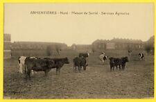 cpa 59 - ARMENTIÈRES (Nord) MAISON de SANTÉ SERVICES AGRICOLES Vaches au Pré
