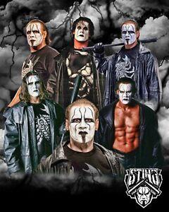 STING 8x10 CUSTOM PHOTO WWE ROH ECW TNA NXT HOH AEW's NEWEST SUPERSTAR