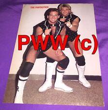 The Fantastics,Wrestling Pin Up,2-Sided,Gino Hernandez,Chris Adams,WCCW,NWA,Rare