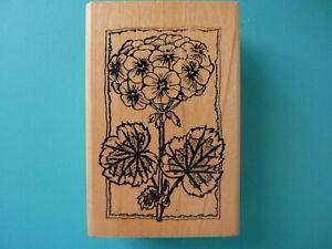 Stemmed Hydrangea Blossom HAMPTON ART Rubber Stamp