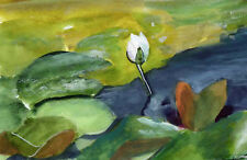 Water Lily Bud Original Watercolor 4 x 6 inches
