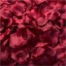 1000 Wine red Silk Rose Petals Confetti Flower Wedding Celebration Decorations