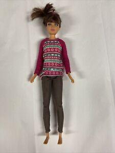2010 Mattel Skipper Doll Brunette Pink Streak Hair Articulated Legs W/ Outfit