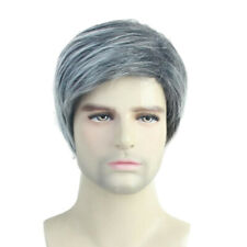 10'' Men's Handsome Short Cosplay Party Wig Synthetic Fluffy Wigs Gray White
