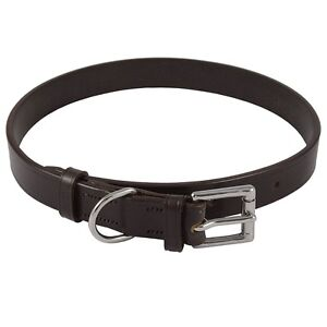 "Audenham Brown 19mm/0.75"" English Bridle Leather & Stainless Steel Dog Collar"