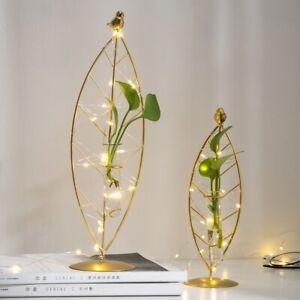 Home Vase Decoration Nordic Terrarium Glass Accessories Garden Living Room Decor