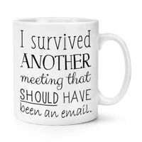 I Survived Another Meeting That Should Have Been An Email 10oz Mug Cup - Funny