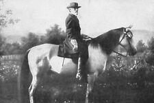 New 5x7 Civil War Photo: Confederate General Robert E. Lee & Horse, Traveller