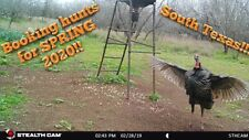 🦃NOW BOOKING SPRING🦃2020 South Texas Private (1 group at a time) Turkey Hunts