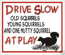 Drive Slow Nutty Squirrel Novelty Sign