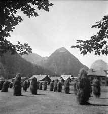 PERTISAU c. 1959 - Meules de Foin Fermes Autriche - Négatif 6 x 6 - Aut 225