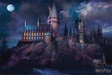 Harry Potter (Hogwarts) Maxi Poster - 61cm x 91.5cm - PP34369 - 249