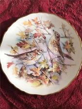 ROYAL ALBERT THRUSH PLATE GARDEN BIRDS SERIES 1989
