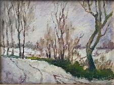 Cesare Denoyè (pittore piemontese del primo '900).Campagna a Stupinigi, nevicata