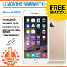 Apple iPhone 6 128GB Factory Unlocked - Champagne Gold