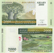 Madagascar 2000 Francs (ND/2014) - Polymer Hybrid/Baobabs/p96 UNC