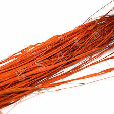 100g Natural Coloured Raffia Palm Fibres Leaves Ribbon Floral Supplies Crafts OR