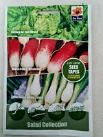 5mtr SEED TAPES Lettuce Radish Spring Onion SET Collection DE REE Grow Garden