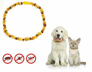 100%Baltische Bernstein Halsband Kette für Hunde/Katzen RohAmber ca 31,5-32,5cm.