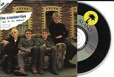CD CARTONNE CARDSLEEVE THE CRANBERRIES 2t ode to my family