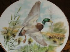 More details for royal grafton collectors plate mallard plate 1 in the game birds collection