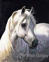 CHENPAT18 high quality hand-painted animal white horse oil painting on canvas